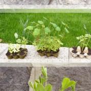 DIY : godets récup pour semis, un jardin gratuit !