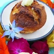 Un atelier créatif au goûter d'anniversaire + recette gâteau au citron vegan