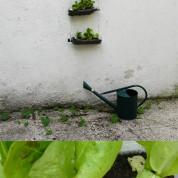 DIY : créer son potager suspendu