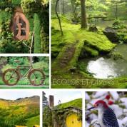 Liste de blogs écolos et creatifs coup de coeur