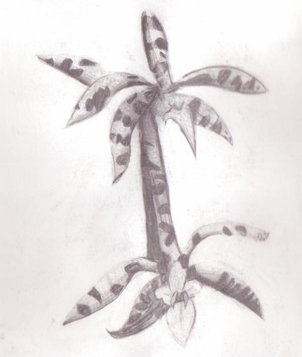les-plantes-dépolluantes-1