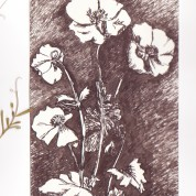 Feng shui : les plantes dépolluantes
