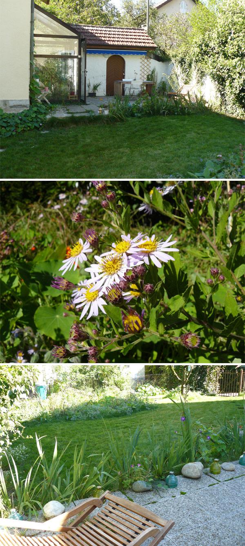 mon-jardin-de-fin-d'été-1