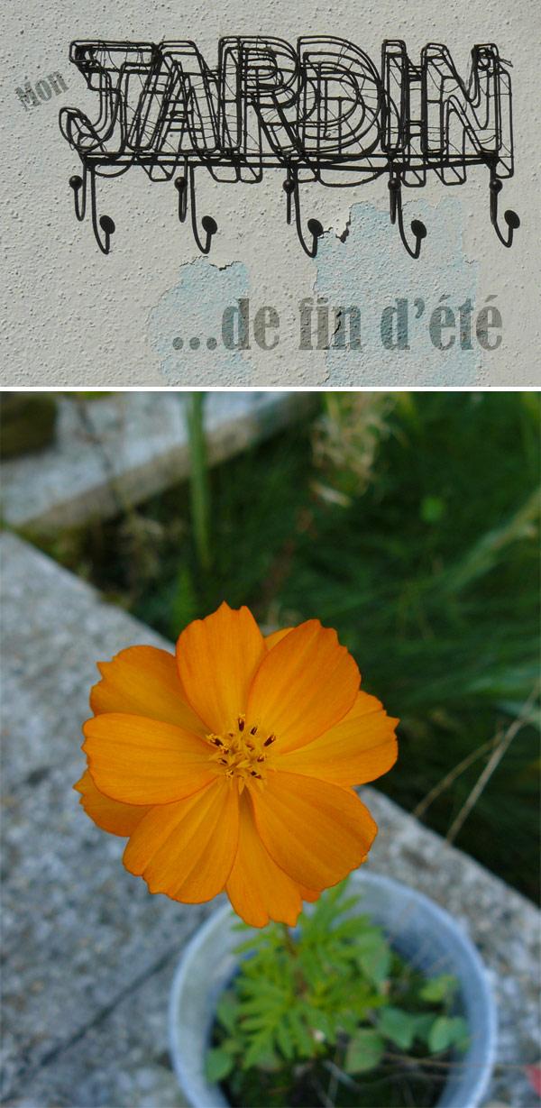 mon-jardin-de-fin-d'été