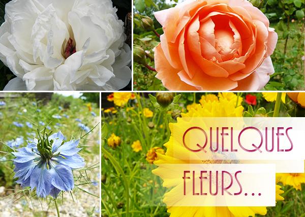 bouquet-plat3