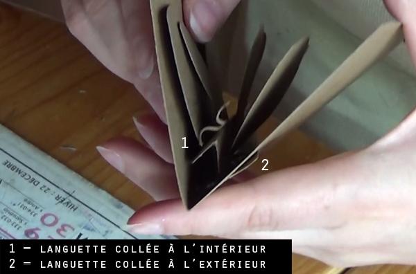 papillon-languettes