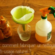 DIY :  comment fabriquer un nettoyant multi-usage naturel ?
