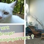 Comment emménager écologiquement (partie 2)