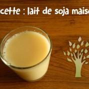 Recette : lait de soja maison