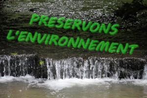 environnement1bis