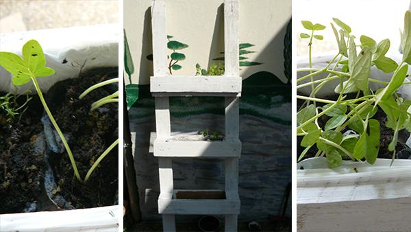 miniature jardinière en palettes 4