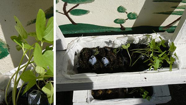 miniature jardinière en palettes 5