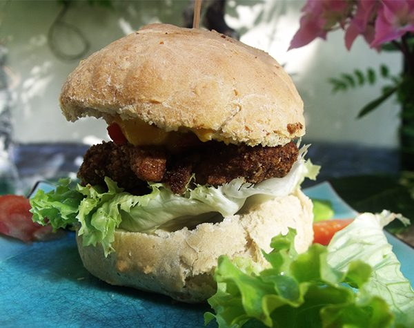 hamburger vegan6