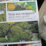 stop-au-ravageur-dans-mon-jardin