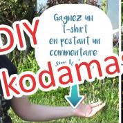 DIY : comment faire un sylvain de Miyazaki en terre (concours)